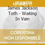 James Jackson Toth - Waiting In Vain cd musicale di James Jackson toth