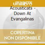 Acousticats - Down At Evangalinas cd musicale di Acousticats