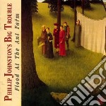Flood at the ant farm cd musicale di Phillip johnston s b