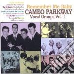 Cameo Parkway Vocal Groups Vol.1 cd musicale di V.A. CAMEO PARKWAY V