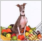 Shellac - Excellent Italian Greyhound cd musicale di SHELLAC