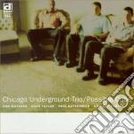 Chicago Underground Trio - Possible Cube cd musicale di Chicago underground trio