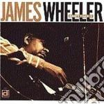 James Wheeler - Can't Take It cd musicale di Wheeler James