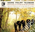 Telemann Georg Philip - Quintets & Quartets For Strings, Flute And Continuo /rebel cd musicale di Telemann georg phil