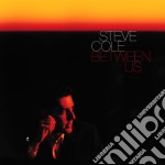 Steve Cole - Between Us cd musicale di COLE STEVE