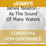 James Newton -  As The Sound Of Many Waters cd musicale di Newton James