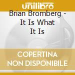 Brian Bromberg - It Is What It Is cd musicale di BROMBERG BRIAN