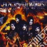Black Veil Brides - Set The World On Fire cd musicale di Black veil brides