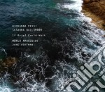 Giovanna Pessi / Susanna Wallumrod - If Grief Could Wait cd musicale di Pessi giovanna - wal