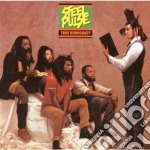 Steel Pulse - True Democracy cd musicale di Pulse Steel