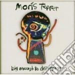 Moris Tepper - Big Enough To Disappear cd musicale di Tepper Moris