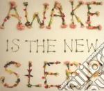 Ben Lee - Awake Is The New Sleep cd musicale di Ben Lee