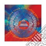 Acid Mothers Temple - Iao Chant From The Melting Paraiso Under cd musicale di Acid mothers temple