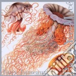 Pierre-Yves Mace' - Faux Jumeaux cd musicale di Pierre-yves Mace