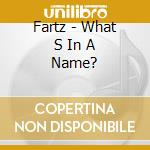 WHAT S IN A NAME?                         cd musicale di FARTZ
