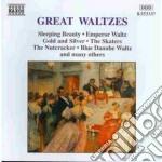 Great Waltzes cd musicale
