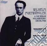 Furtwangler and the berlin phi cd musicale di Artisti Vari