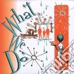 Mcgill / Manring / Stevens - What We Do cd musicale di Gill/manrig/steve Mc