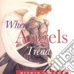 Medwyn Goodall - Where Angels Tread cd musicale di Medwyn Goodall