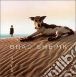Brad Shepik - The Well cd musicale di Shepik Brad
