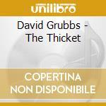David Grubbs - The Thicket cd musicale di DAVID GRUBBS