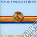 Alasdair Roberts And Friends - A Wonder Working Stone cd musicale di Alasdair roberts & f