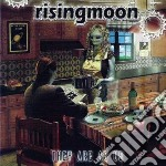 They are as us cd musicale di Risingmoon