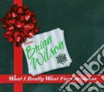 Brian Wilson - What I Really Want For Christmas cd musicale di Brian Wilson
