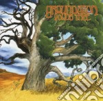 Groundation - Young Tree cd musicale di GROUNDATION