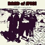 Band Of Spice - Feel Like Coming Home cd musicale di Band of spice