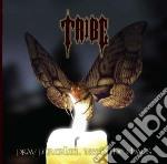 Tribe - Pray For Calm... cd musicale di Ribe