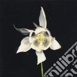 Fridge - Happiness cd musicale di FRIDGE