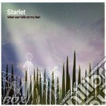 Starlet - When The Sun Falls On My Feet cd musicale di Starlet