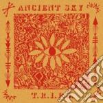 Ancient Sky - T.r.i.p.s. cd musicale di Sky Ancient