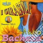 A TUTTA BACHATA  VOL.17 cd musicale di I GIRASOLI