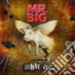 Mr. Big - What If cd musicale di MR.BIG