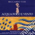 Riccardo Tesi - Acqua Foco E Vento cd musicale di TESI RICCARDO
