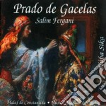 Salim Fergani - La Noria De Los Modos cd musicale di Salim Fergani