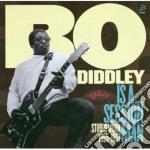 (LP VINILE) Is a sessionman-studio work 1955-57 lp vinile di Bo Diddley