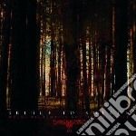 Bridge To Solace - Where Nightmares Abd Dre cd musicale di Bridge to solace