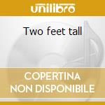 Two feet tall cd musicale di Hobbit