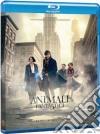 (Blu-Ray Disc) Animali Fantastici E Dove Trovarli dvd