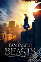 Puzzle Fantastic Beast - New York game acc