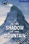 In the Shadow of the Mountain: Level 5