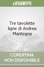 Tre tavolette ligne di Andrea Mantegna libro di Negro E. (cur.); Roio N. (cur.)