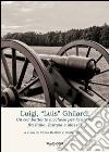 Luigi, «Luis» Ghilardi. Un combattente lucchese per la libertà fra Italia, Europa e Messico libro