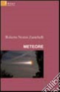 Meteore libro di Nonni Zanichelli Roberta