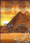L'Egitto curioso. Spie, ladri di tombe, scioperi e lifting al tempo dei faraoni libro